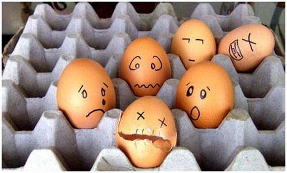 105584,xcitefun-funny-eggs-7