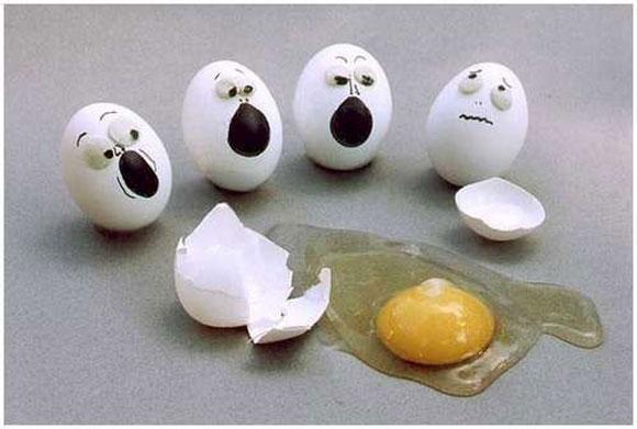 105595,xcitefun-funny-eggs-16