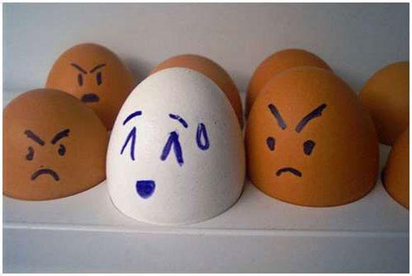 105598,xcitefun-funny-eggs-13